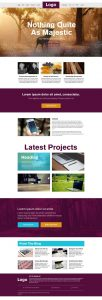 liberated Website Template Psd
