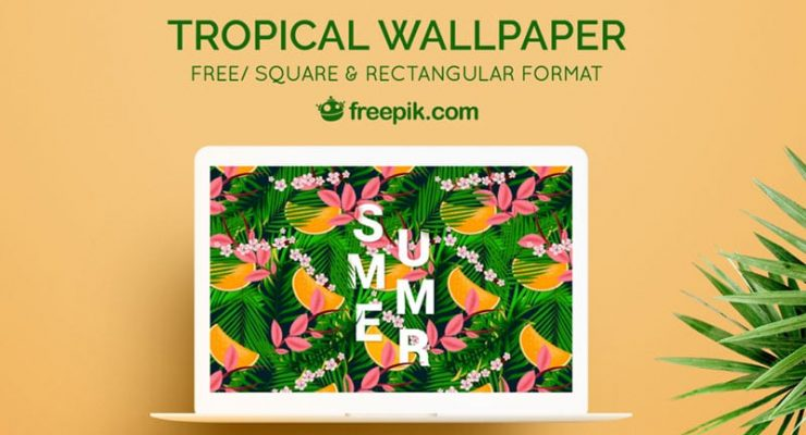 tropical backgrounds cover image