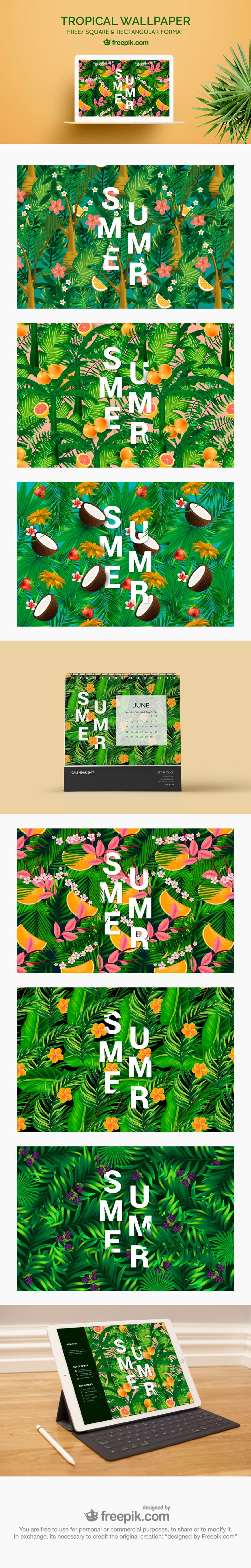 vector tropical illustrations